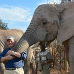 Being cuddled by an elephant