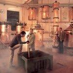 Distilleria Grappa Villa de Varda