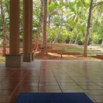 View from the yoga hall