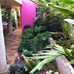 este es el pasillo con una fuente hermosa para ir a la alberca