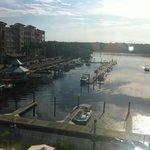 Relaxing Water View