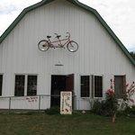 Tasting room--LOVE the bike!