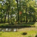 Parc & Forêt