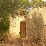 Past grandeur, a local ruin, ( great to paint) or photograph.