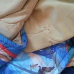 Their lovely comforter with blood!