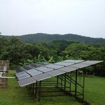 solar panels on the grounds