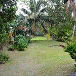 Aorangi Gardens