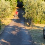 The driveway up to the road and our dinner at La Casa del Prosciutto