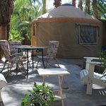 Enjoy the Palm grove from you own patio!
