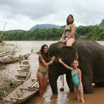 In the Nam Ou with the elephant