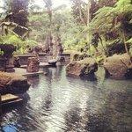 holy pool