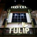 Tulip Hotel Exterior Night View