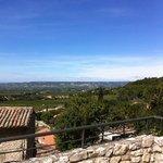 Gigondas view