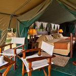 Entim Guest Tent