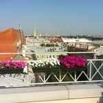Панорамная площадка/Panoramic deck
