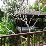 Own private daybed on lower level of villa