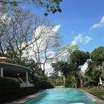 Main shared pool area
