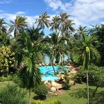 View from balcony (seaview room) over the garden, pool and the sea.