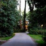 camino que lleva al hotel