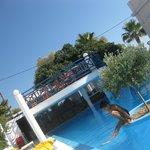 Lovely Olive tree pool