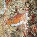 Antilope (Rock-Painting)
