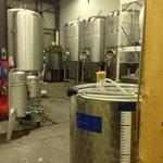 Fermentation Vessels
