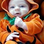 Fall Pumpkin Festival 2013