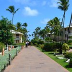 Main Walkway to Pool and Beach