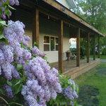 Lilacs encase the front verandha