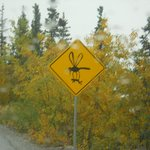 hilarious road signs 1