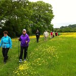 Hiking the Cotswold Way
