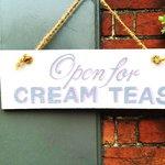 Teapot Tea Shop