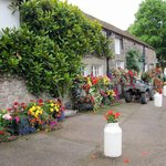 Floral reception at Dornafield