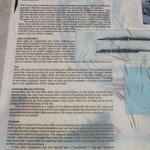Navan Fort archaeological explanation