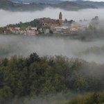 Photo of Azienda Agricola Pellegrini Franco
