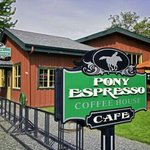 Pony Espresso Coffee House Foto