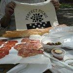 picnic on governor's island