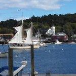 Busy Harbor