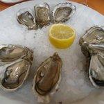 Photo of Jaloa Brasserie Jardin
