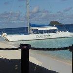 Yannis snorkel trip - you gotta go.  Swam with sea turtles.