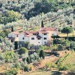 Fuccioli II property