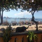 beach outside Tembo