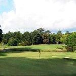 Snee Farm Country Club - Golf