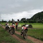 Riding through the paddy fields