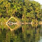 Elbo Lake