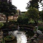 Fantastic garden