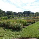 Eleutherian Mills Garden Hagley