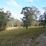 from the top of hunter valley retread