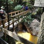 Bridge crossing on Perimeter Trail, Ouray CO