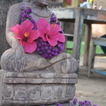 buddha welcoming guests